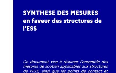 Synthèse des mesures en faveur des structures de l'ESS (19 avril 2021)